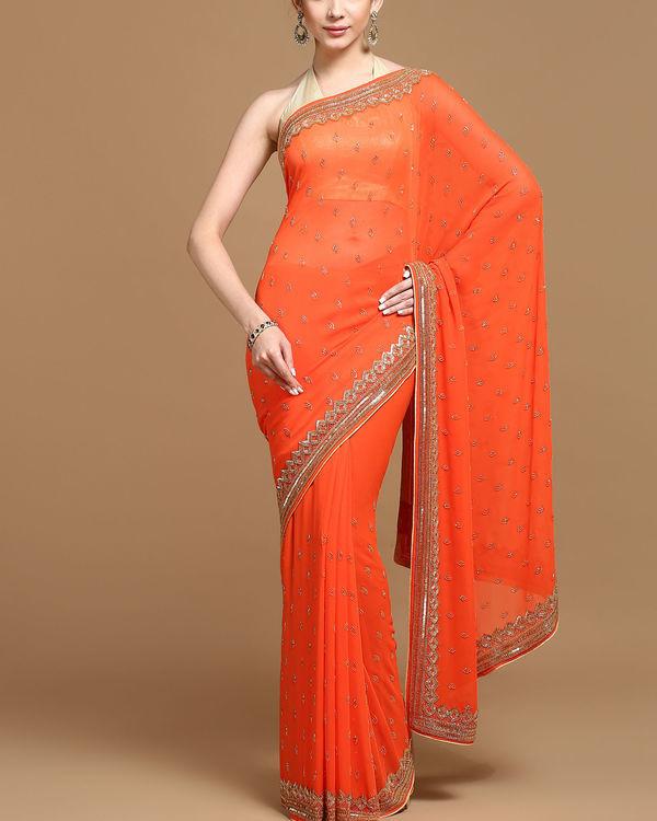 Aztec passion sari