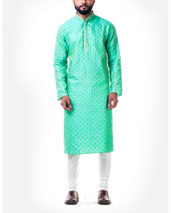 Pastel green thread embroidery kurta set