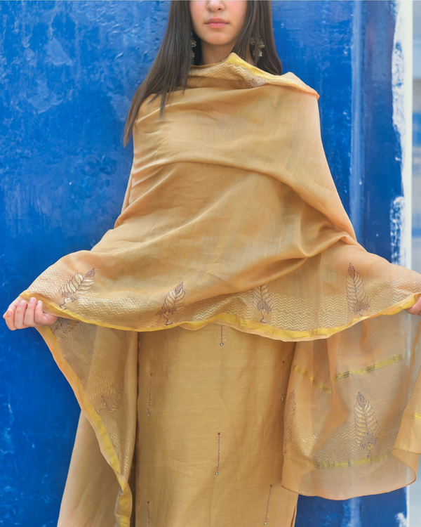 Apricot Chanderi Suit Set - Set of Three 2