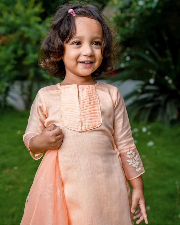 Peach kurta and pant with embroidered organza dupatta - Set of Three 1