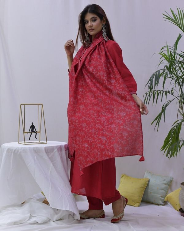 Red mirror work paneled kurta and pants with stole- Set Of Three 2