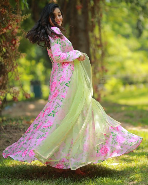 Pastel pink and green floral maxi dress with embroidered dupatta - Set Of Two 2