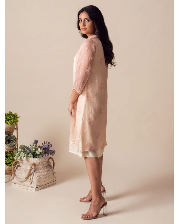 Light lemon embroidered dress with chiffon cover-up - Set Of Two 2