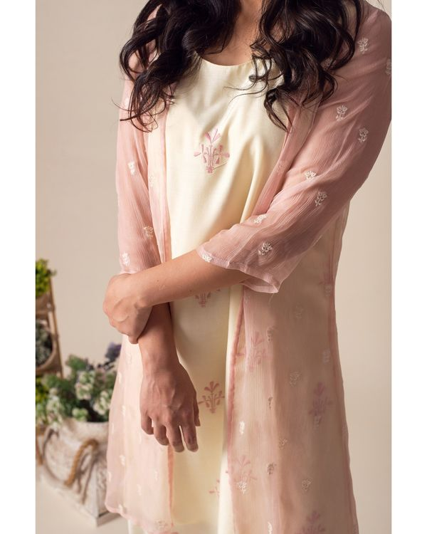 Light lemon embroidered dress with chiffon cover-up - Set Of Two 1