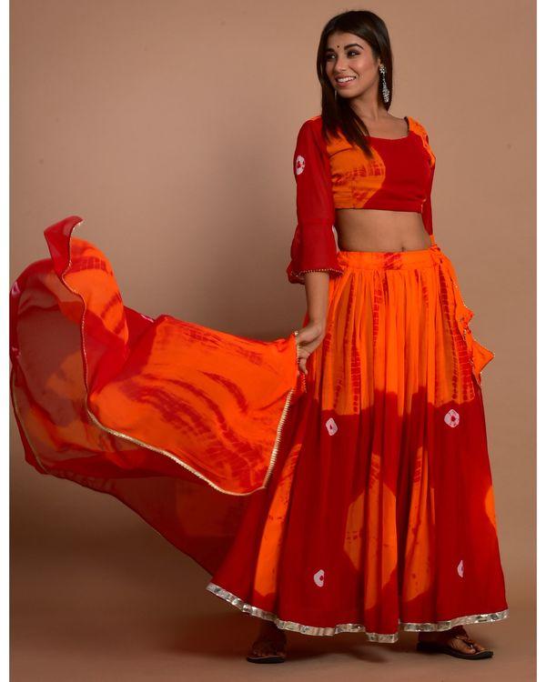 Marsala red tie and dye choli and lehenga with dupatta - Set Of Three 3