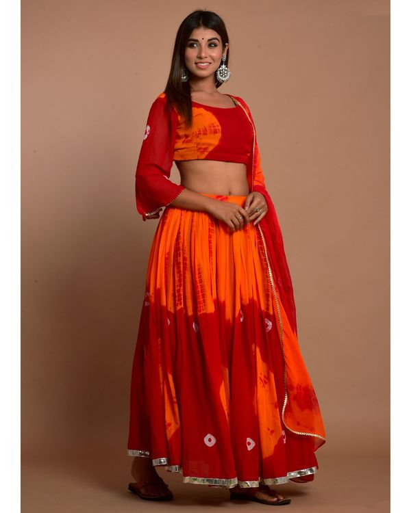 Marsala red tie and dye choli and lehenga with dupatta - Set Of Three 2