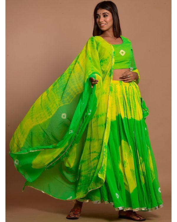 Green and yellow tie and dye choli and lehenga with dupatta - Set Of Three 2
