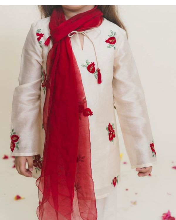 Red embroidered straight kurta with pants - Set of Two 1