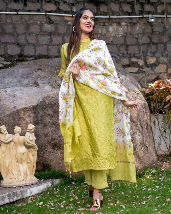 Lemon embroidered kurta set with dupatta - set of three 2