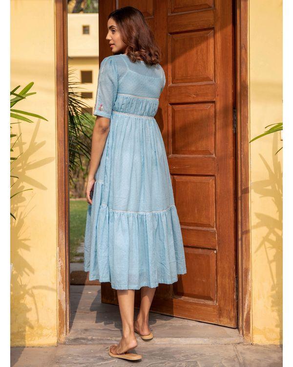 Blue poppy dress 3