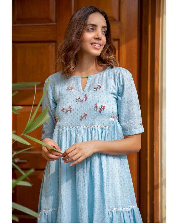 Blue poppy dress 1