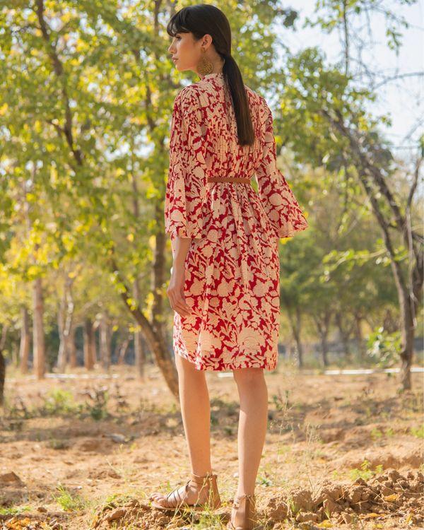Red rose dress 2