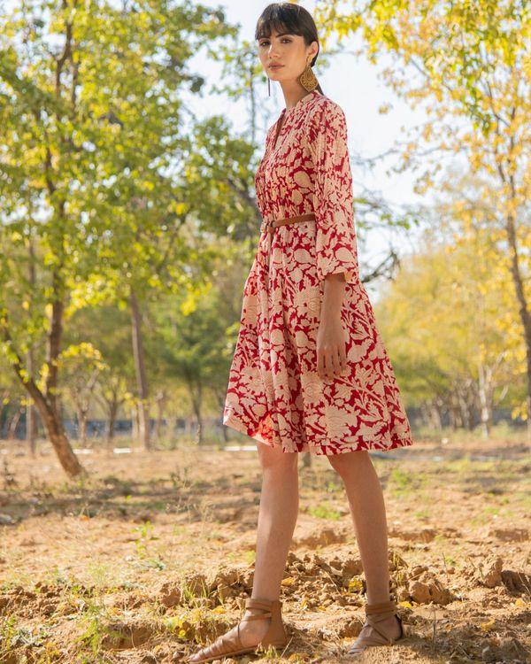 Red rose dress 1