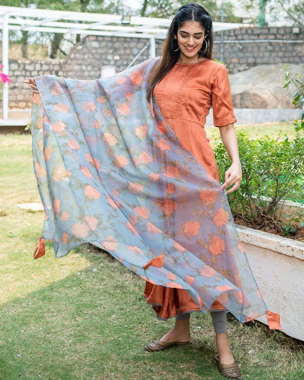 Rust umbrella cut dress with grey printed organza dupatta - set of two 1